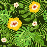Seamless pattern with exotic tropical leaves and flowers Stock Photo