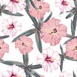 Seamless pattern with exotic tropical palms and hibiscus flowers. White background. stock illustration