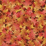 Seamless pattern with fallen autumn leaves Royalty Free Stock Images