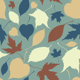 Seamless pattern with falling leaves. Autumn Royalty Free Stock Images