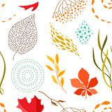 Seamless pattern with falling leaves. Natural illustration of autumn foliage Stock Photos