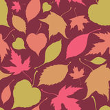 Seamless pattern with falling leaves Royalty Free Stock Photography