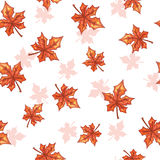 Seamless pattern with falling maple red leaves. Royalty Free Stock Images