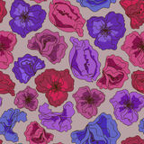 Seamless pattern of fancy flowers Royalty Free Stock Image