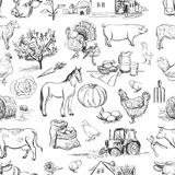 Seamless pattern with farm related items Royalty Free Stock Photography