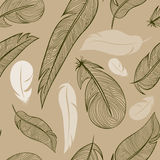 Seamless pattern from feather of a bird. Vector illustration Stock Photography