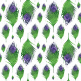Seamless pattern with feathers Royalty Free Stock Image