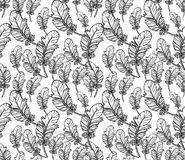 Seamless Pattern with Feathers Eggs Stock Images