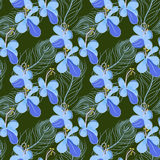 Seamless pattern with feathers and flowers Royalty Free Stock Images