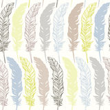 Seamless pattern with feathers. Hand-drawn   background. Stock Photo