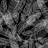 Seamless pattern with feathers. Hand-drawn monochrome  bac Stock Image