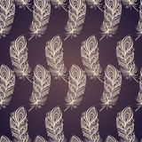 Seamless Pattern with Feathers Stock Image