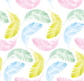 Seamless pattern of feathers Stock Photo