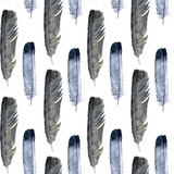 Seamless pattern with feathers Stock Photo