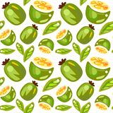 Seamless pattern from feijoa stock image