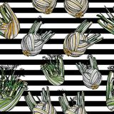 Seamless pattern with fennel. Seamless pattern with fennel on striped background. Vector illustration. Typography design elements for prints, cards, posters Stock Images