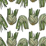Seamless pattern with fennel. Seamless pattern with fennel on white background. Vector illustration. Typography design elements for prints, cards, posters Stock Photos