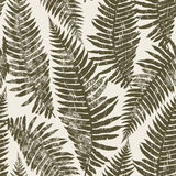 Seamless pattern of fern. Stock Image