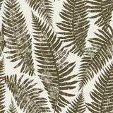 Seamless pattern of fern. Stock Image
