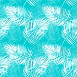 Seamless pattern of fern leaves. Seamless pattern of white fern leaves on a blue background Royalty Free Stock Images