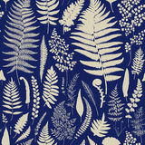 Seamless pattern. Ferns. Vintage vector botanical illustration. Blue Royalty Free Stock Photo