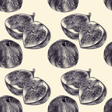 Seamless pattern with figs drawn by hand with pencil Royalty Free Stock Photo
