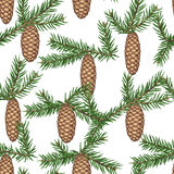 Seamless pattern with fir branches and cones. Detailed vintage illustration Royalty Free Stock Photo