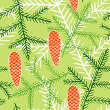 Seamless pattern of fir branches and cones. Spruce branches and cones are hand-drawn on a green background. Contour vector image Stock Photo