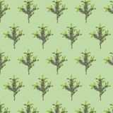 Seamless pattern with fir branches on green background stock illustration
