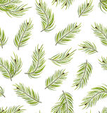 Seamless Pattern with Fir Branches Stock Photo