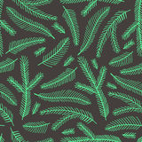 Seamless pattern with fir branches. Royalty Free Stock Photography