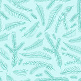 Seamless pattern with fir branches. Stock Photography