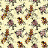 Seamless pattern with fir cones. Seamless pattern with hand drawn fir cones Stock Photo