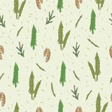 Seamless pattern with fir, spruce, cones, branches. Stock Images