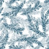 Seamless pattern with fir tree branches 2. Watercolor seamless pattern with fir tree branches Stock Photos