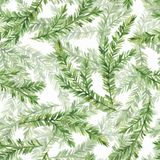 Seamless pattern with fir tree branches 1. Watercolor seamless pattern with fir tree branches Stock Image