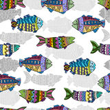 Seamless pattern with fish  design. Stock Photography