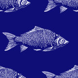 Seamless pattern with fish. Engraved illustration. Vintage Stock Photo