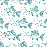 Seamless pattern fish. Perch. Vector Stock Images