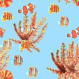Seamless pattern with fishes. Clownfish, butterflyfish. Watercolor vector illustration