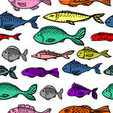 Seamless pattern with fishes. Colorful collection of fish isolated on white background. Seamless pattern vector illustration