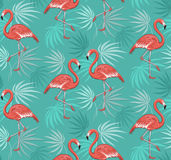 Seamless Pattern with Flamingo Birds and Tropical Leaves Stock Image
