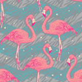 Seamless pattern with flamingo birds Royalty Free Stock Photography