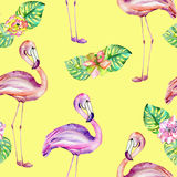 Seamless pattern with the flamingo and exotic flowers Stock Image