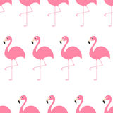 Seamless Pattern Flamingo Exotic tropical bird. Zoo animal collection. Cute cartoon character. Decoration element. White backgroun Stock Photo