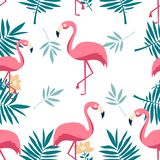 Seamless pattern of flamingo, leaves monstera, tropical leaves of palm tree. Vector background stock illustration
