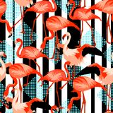 Seamless pattern with flamingo. Tropical bright abstract birds vector illustration
