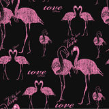Seamless pattern flamingo. Vector illustration of seamless pattern flamingo. Chalk board design Stock Image