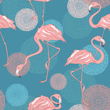 Seamless pattern of flamingos Stock Photos