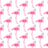 Seamless pattern with flamingos. Hand-drawn background. Vector illustration. Royalty Free Stock Photo